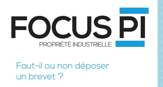 focus-PI-8-h300